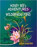Wildness pond